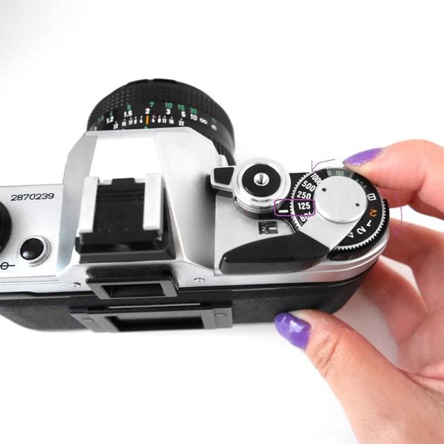 f:id:papiocamera:20200919133419j:plain