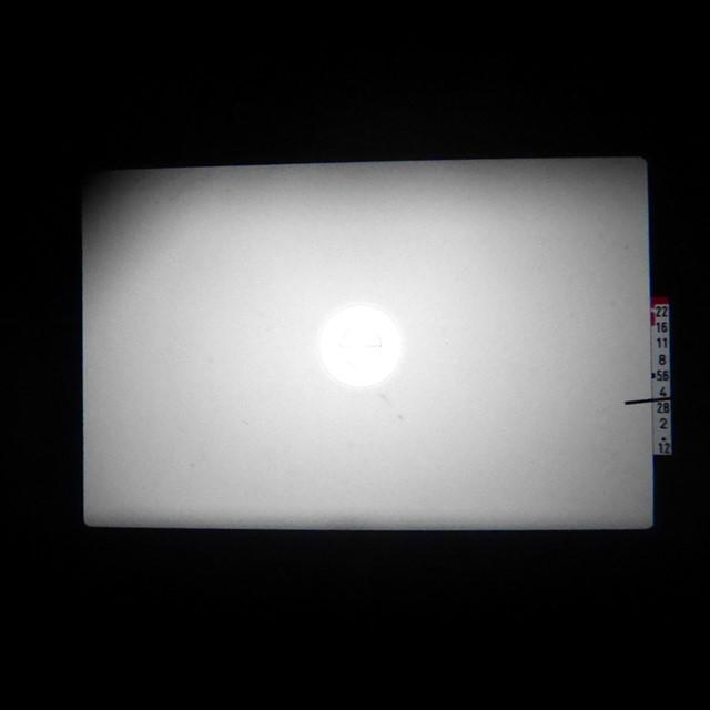 f:id:papiocamera:20200919135125j:plain