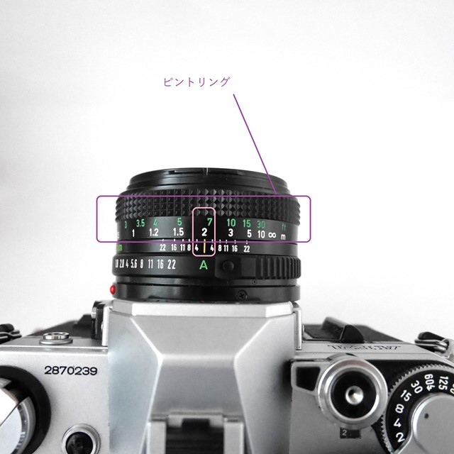 f:id:papiocamera:20200919142811j:plain