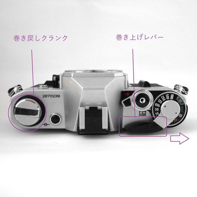 f:id:papiocamera:20200920141712j:plain