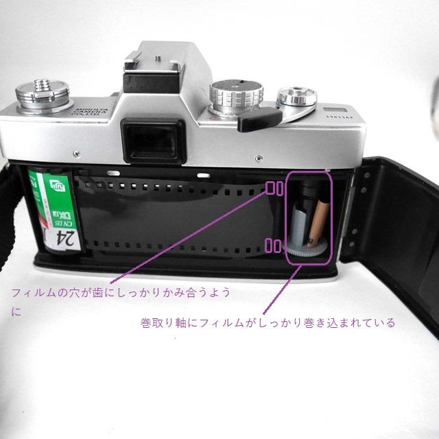 f:id:papiocamera:20200925125458j:plain