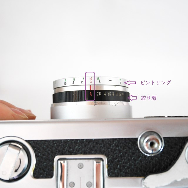 f:id:papiocamera:20201007131004j:plain