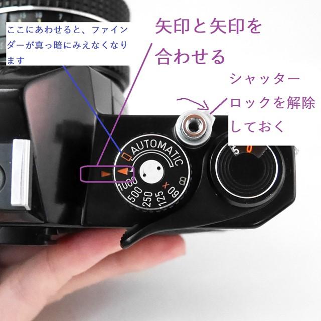 f:id:papiocamera:20201011132544j:plain