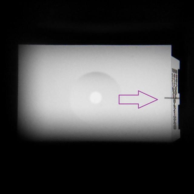 f:id:papiocamera:20201011133544j:plain