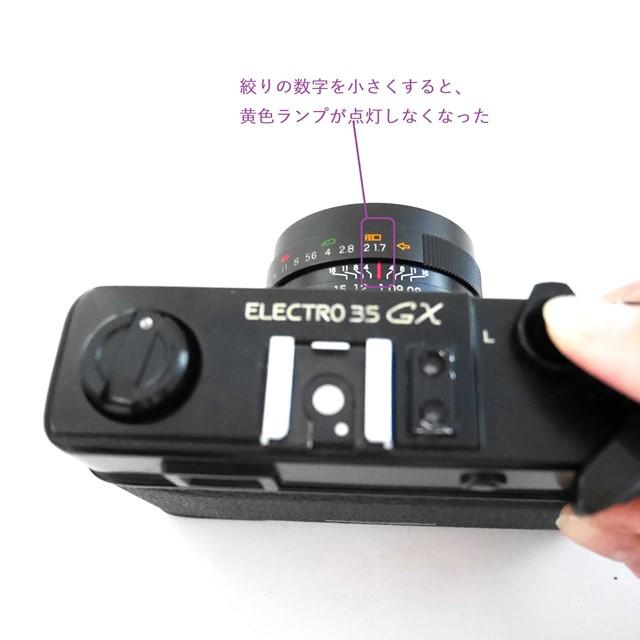 f:id:papiocamera:20201101132215j:plain
