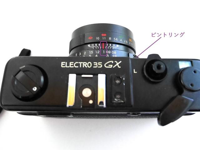 f:id:papiocamera:20201101132945j:plain