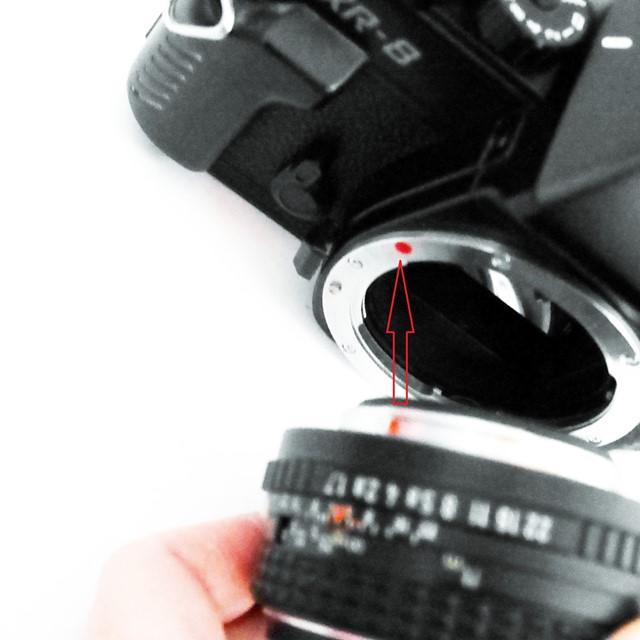 f:id:papiocamera:20210107113456j:plain