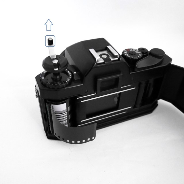 f:id:papiocamera:20210107133533j:plain
