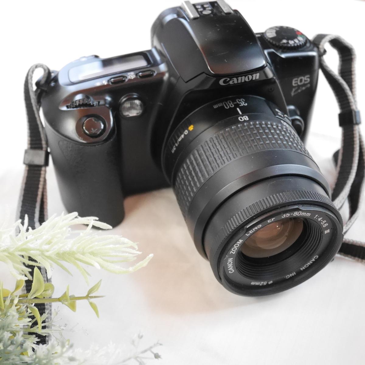 f:id:papiocamera:20210201155758j:plain