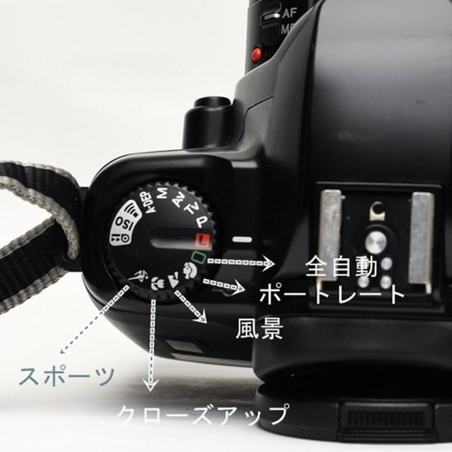 f:id:papiocamera:20210207164704j:plain