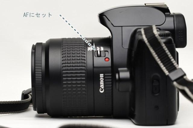 f:id:papiocamera:20210208104258j:plain