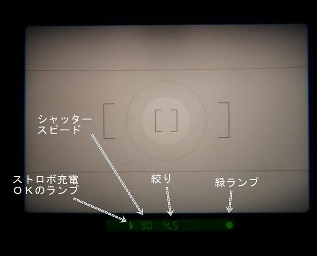 f:id:papiocamera:20210208113417j:plain