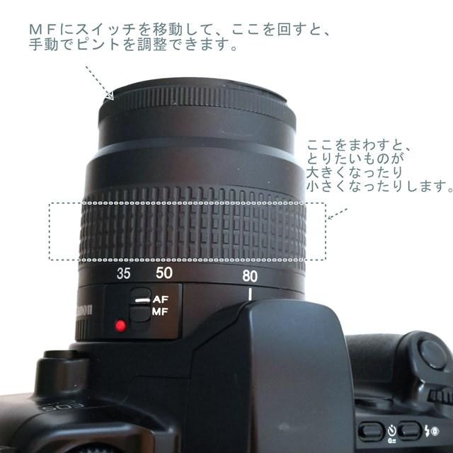 f:id:papiocamera:20210209120646j:plain