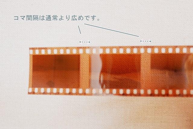 f:id:papiocamera:20210211154635j:plain