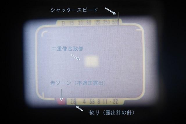 f:id:papiocamera:20210214152820j:plain
