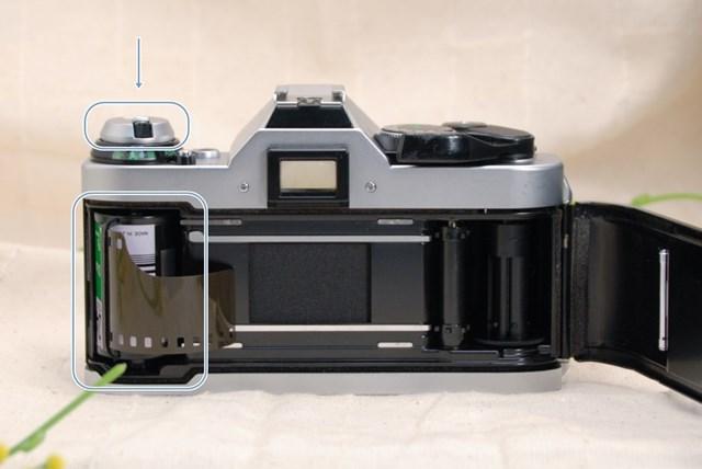 f:id:papiocamera:20210423090653j:plain