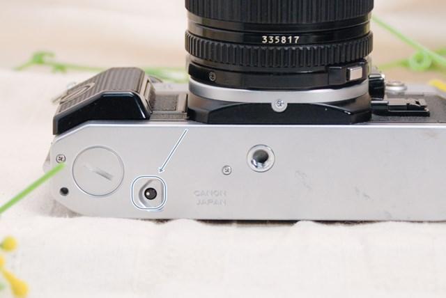f:id:papiocamera:20210423102445j:plain
