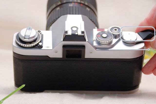 f:id:papiocamera:20210423122847j:plain