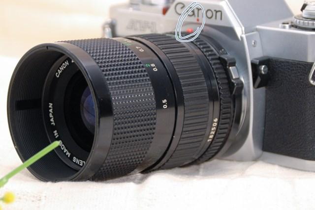 f:id:papiocamera:20210423124045j:plain