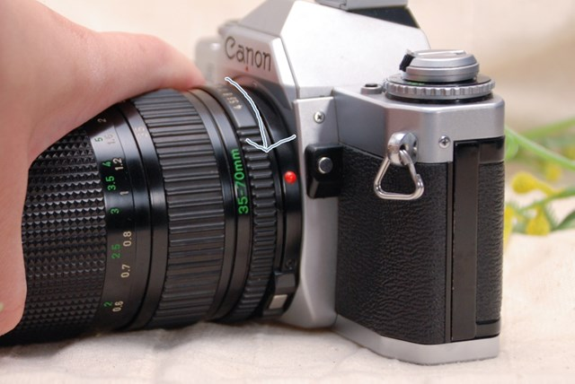 f:id:papiocamera:20210423124105j:plain