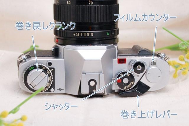 f:id:papiocamera:20210423124944j:plain