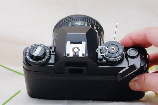 f:id:papiocamera:20210508131239j:plain