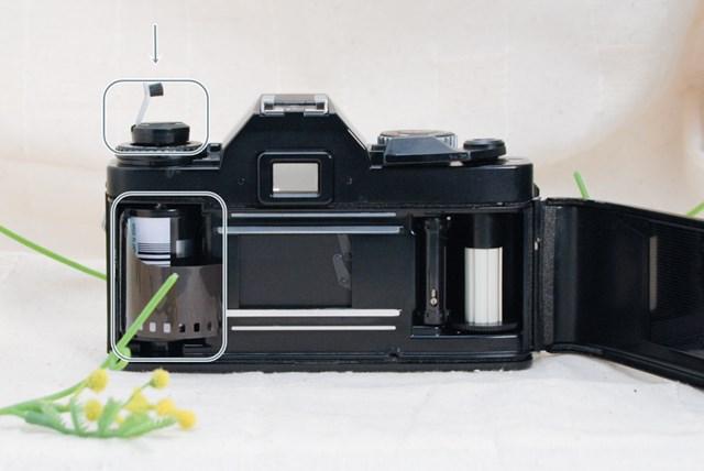 f:id:papiocamera:20210508134125j:plain