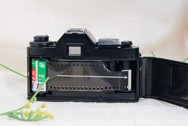 f:id:papiocamera:20210508134142j:plain