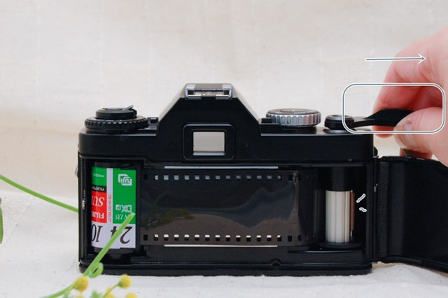 f:id:papiocamera:20210508134205j:plain