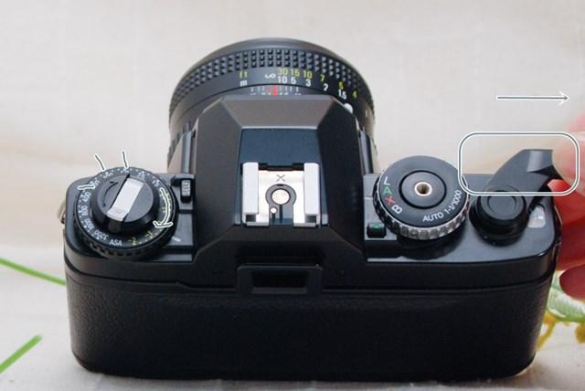 f:id:papiocamera:20210508134522j:plain