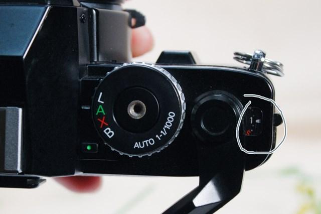 f:id:papiocamera:20210508134610j:plain