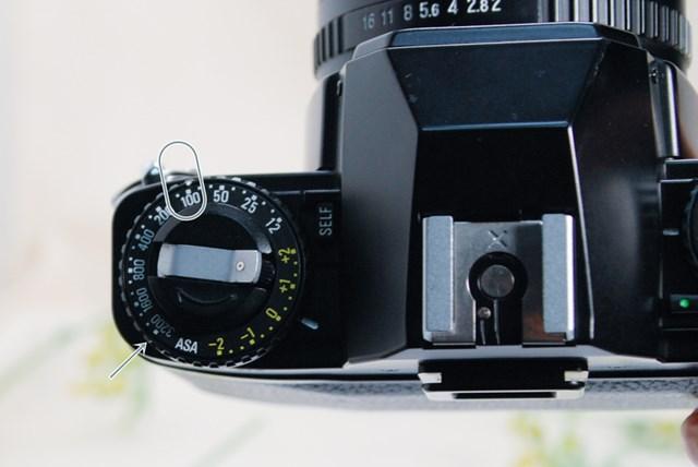 f:id:papiocamera:20210508135106j:plain