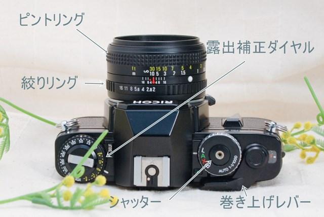 f:id:papiocamera:20210508135639j:plain