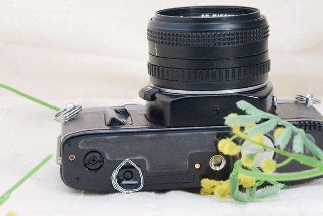 f:id:papiocamera:20210508142632j:plain