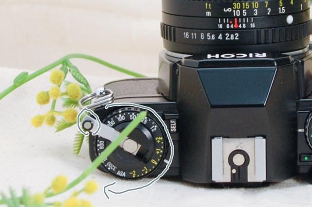 f:id:papiocamera:20210508142650j:plain
