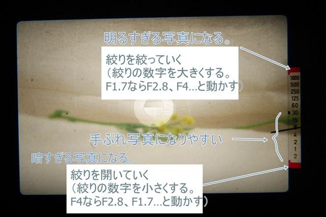 f:id:papiocamera:20210510132022j:plain