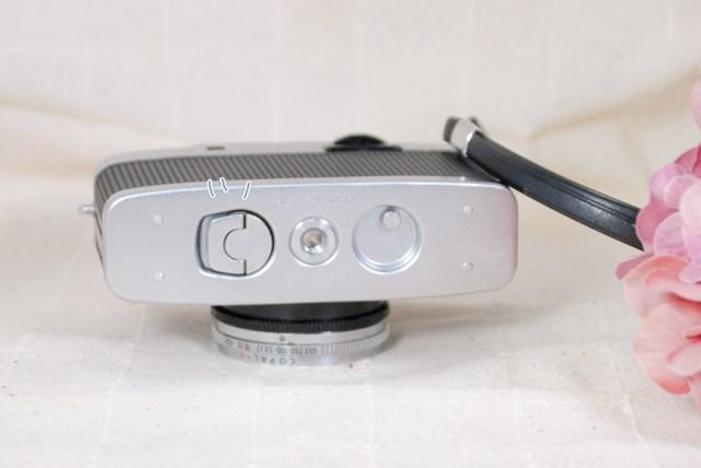 f:id:papiocamera:20210610104733j:plain