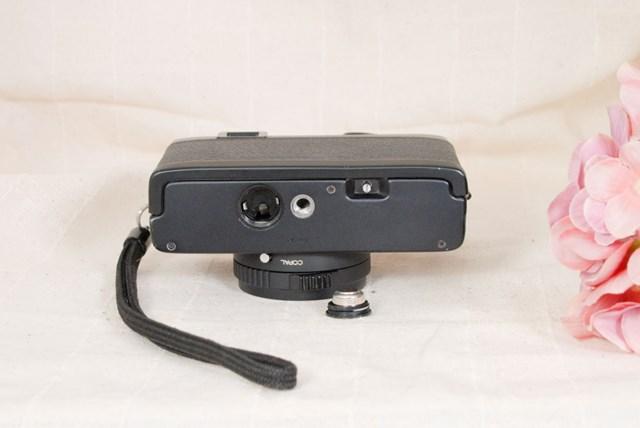 f:id:papiocamera:20210624155339j:plain