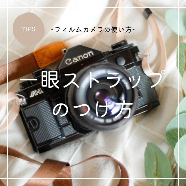 f:id:papiocamera:20210708142509j:plain