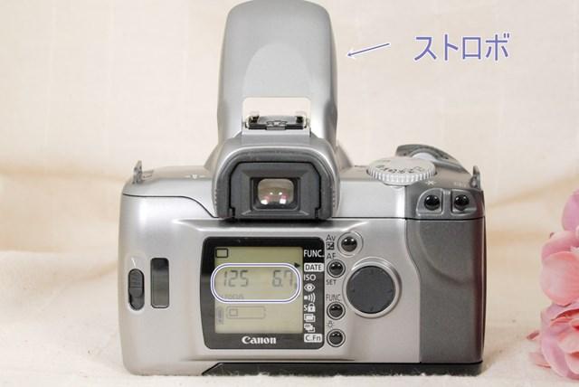 f:id:papiocamera:20210712153755j:plain