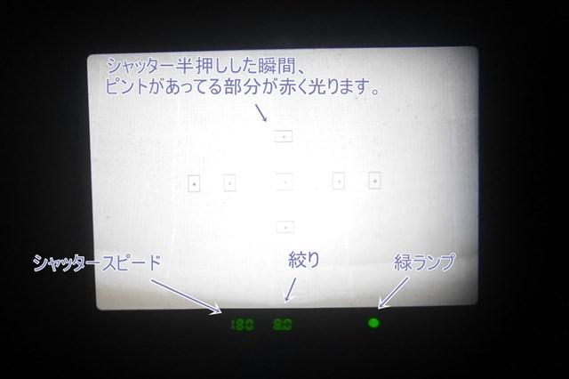 f:id:papiocamera:20210712153840j:plain