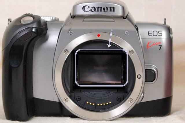 f:id:papiocamera:20210712155125j:plain