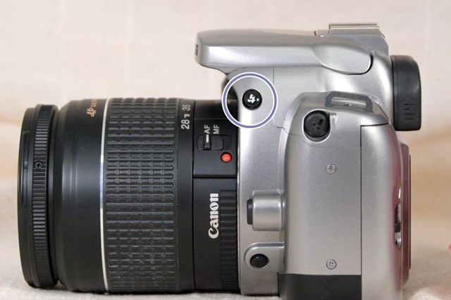 f:id:papiocamera:20210717145411j:plain