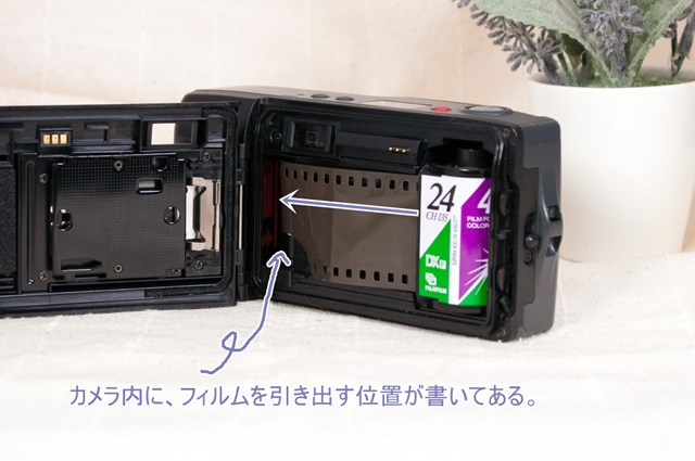 f:id:papiocamera:20210803104817j:plain