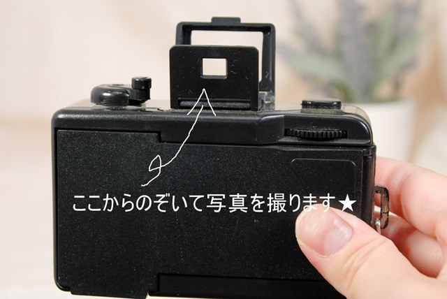 f:id:papiocamera:20210816150044j:plain