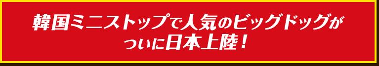 f:id:papurika_jp:20190216042134p:plain