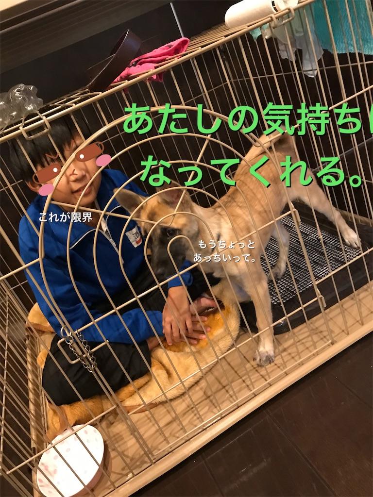 f:id:papurikax:20200115160723j:image