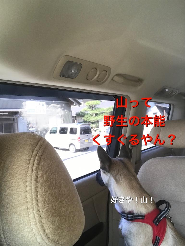f:id:papurikax:20200130211806j:image