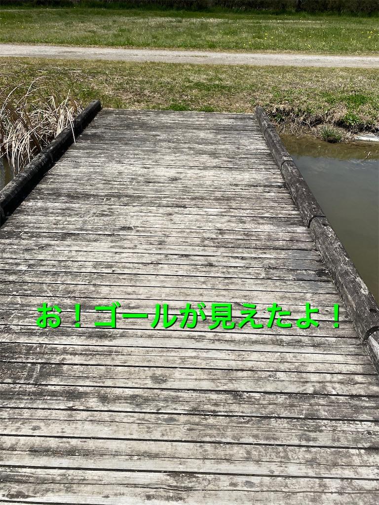 f:id:papurikax:20200406202249j:image