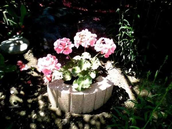 f:id:paque:20120219210931j:image